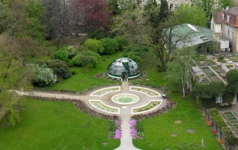 Biljke I Svirke Botanicki Vrt Kao Glazbena Oaza Usred Grada